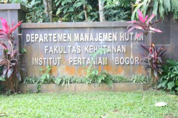 Departemen Manajemen Hutan